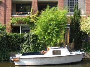 boat NL