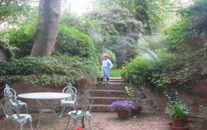 Masion avec jardin à Londres
